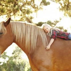 working-horse